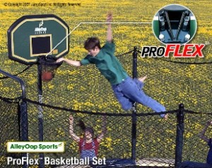 accessories_alleyoop_proflex_01